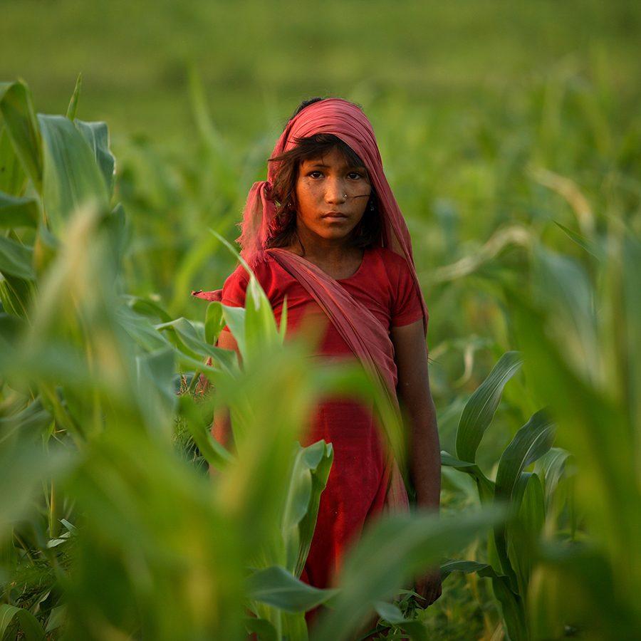 Jente med slør står i en eng i Nepal