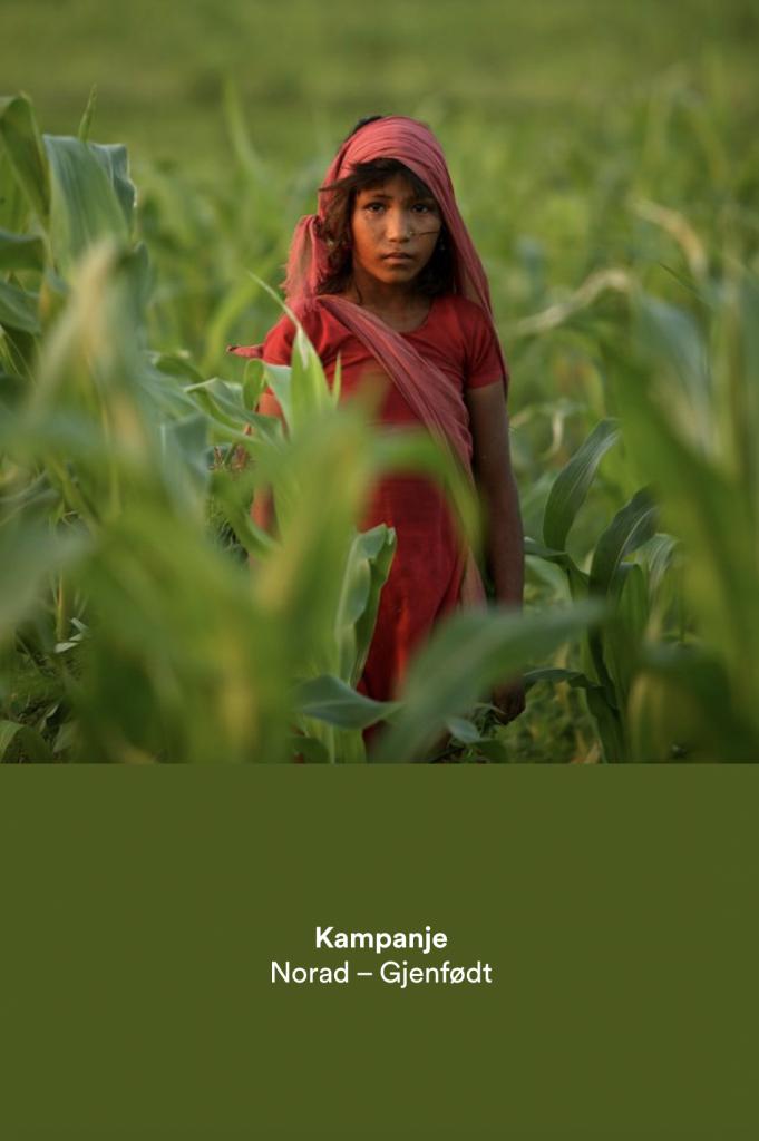 Jente i grønn maisåker, i ført rød kjole. Link til kampanjen som omtale Gjenfødt.no